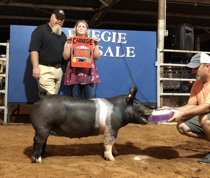 Raven had the Reserve Grand Champion at the Carnegie Free Fair