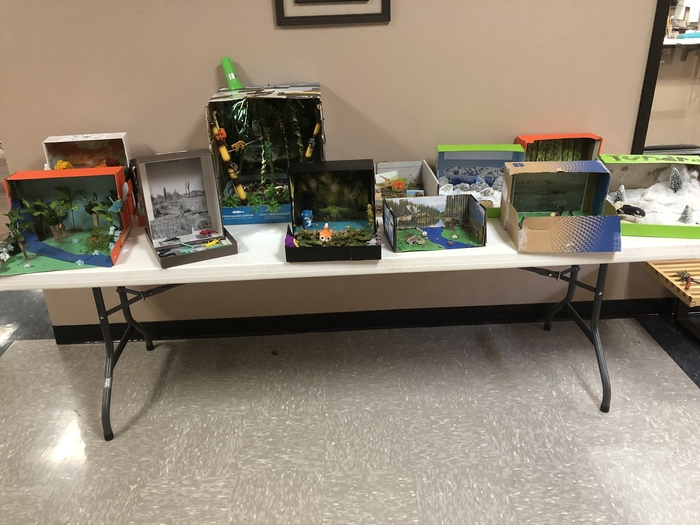 Dioramas in Mrs. Moore's Biology classes