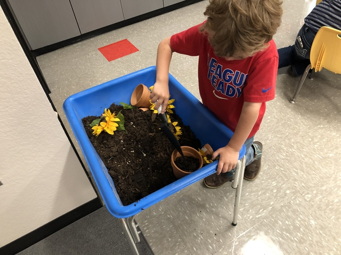 Learning about plants and trying to make them grow.