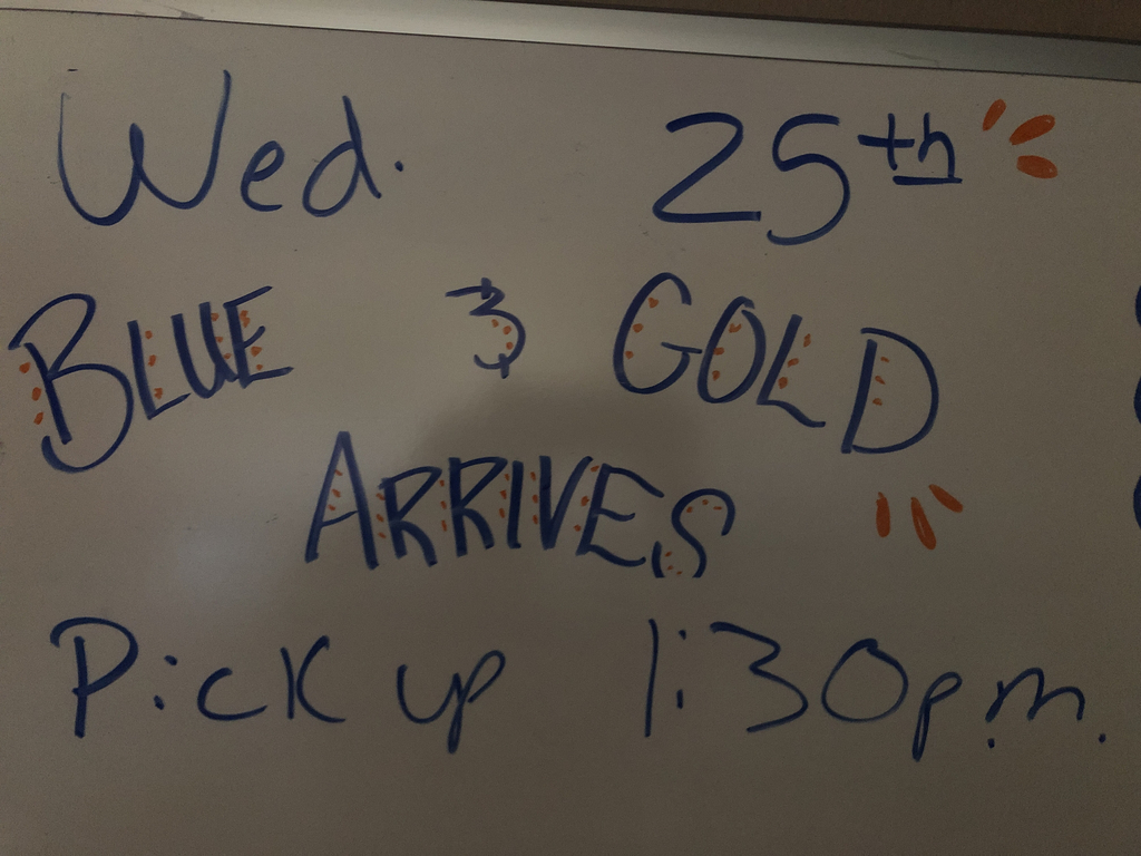 Blue and Gold will be here Wednesday 25th 1:30pm